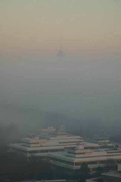 Colonieus im Nebel